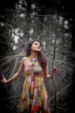 Girl in a dress in a dense forest. Among twigs Royalty Free Stock Photos