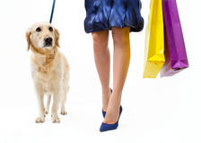Shopping with dog Royalty Free Stock Photos