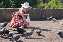 Girl in dress feeding pigeons Royalty Free Stock Images
