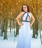 Girl in a dress on a frost Stock Images