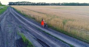 Girl in a dress goes with the bike along fields of wheat. Shooting at the drone. Beautiful landscape from a height. Girl in a dress goes with the bike along stock footage