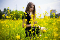 Girl dress in the grass with dandelions. Cute girl dress in the grass with dandelions Royalty Free Stock Photography