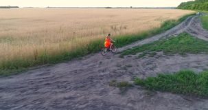 Girl in a dress riding a Bicycle along the wheat fields. Shooting at a drone. Beautiful landscape from a height. Girl in a dress riding a Bicycle along the wheat stock footage