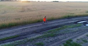 Girl in a dress riding a bicycle along the wheat fields. Shooting at a drone. Beautiful landscape from a height. Girl in a dress riding a bicycle along the wheat stock video