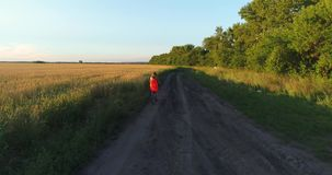 Girl in a dress riding a Bicycle along the wheat fields. Shooting at a drone. Beautiful landscape from a height stock footage