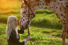 Girl in dress strokes a horse in summer background with green grass royalty free stock images