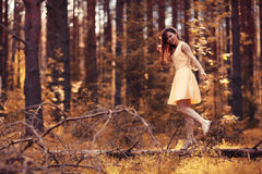 Girl in dress walks in pine sunny forest Royalty Free Stock Photo