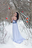 The girl in a dress in the winter Royalty Free Stock Photos