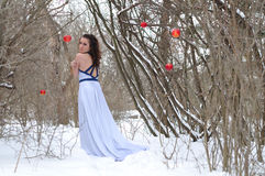 The girl in a dress in the winter Royalty Free Stock Photography