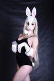 A girl dressed as a bunny studio shooting Royalty Free Stock Photos