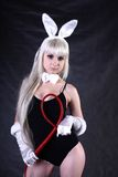 A girl dressed as a bunny studio shooting Royalty Free Stock Images