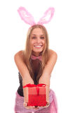 A girl dressed as a rabbit with gifts. Studio shooting Royalty Free Stock Photography