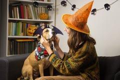 Girl dressing up her dog in halloween bat costume stock photos