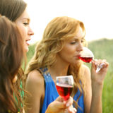 Girl drink wine Stock Image