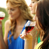 Girl drink wine stock photography