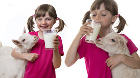 Girl drinking healthy goat milk Stock Photos