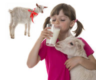 Girl drinking healthy goat milk Stock Images