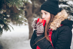 Girl drinking hot tea in the winter forest. Pretty girl drinking hot tea in the winter forest Royalty Free Stock Photo