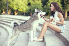 Girl Drinking Ice Coffee And Playing With Her Husky Dog In The Park Stock Images