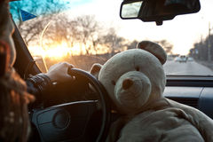 Girl drive. Women drive car with teddy bear Royalty Free Stock Images