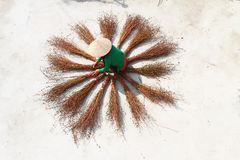 Girl drying brooms Stock Photo