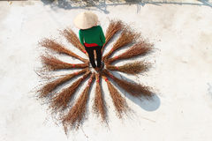 Girl drying brooms Royalty Free Stock Photography