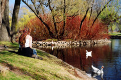 Girl at duck pond Stock Image