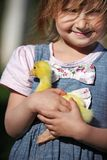 Girl with duckling. On a farm Royalty Free Stock Photography