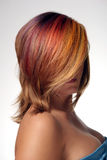 Girl with dyed hair, professional hair colouring Royalty Free Stock Images