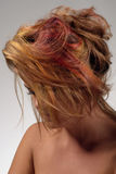 Girl with dyed hair, professional hair colouring Stock Images