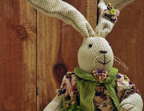 Girl Easter Bunny Royalty Free Stock Image