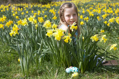 Girl On Easter Egg Hunt In Daffodil Field Royalty Free Stock Photos