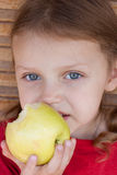 Girl  eating an apple. Portrait of a little girl eating an eating Royalty Free Stock Images