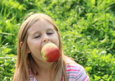 Girl eating an apple. Little kid - hairy blond girl eating an apple stock photography