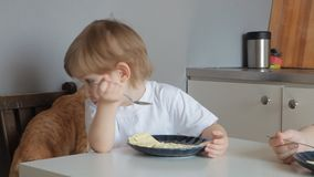 Girl eating an omelet, and red cat walks behind.  stock video footage