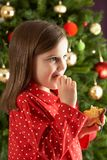 Girl Eating Star Shaped Cookie In Front Of Tree Stock Photography