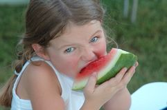 Girl Eating Watermelon. A young girl taking a big bite of watermelon at a picnic Royalty Free Stock Image