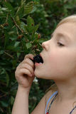 Girl eats a blackberry. The girl eats a blackberry royalty free stock photos