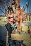 Girl giraffe Stock Photography