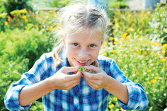 Girl eats green peas in the garden Royalty Free Stock Photography