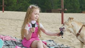 Girl eats ice cream and feeds the dog outdoors. The little girl with blond wavy hair in pink clothes eats ice cream and feeds the dog on the beach on the river stock video footage