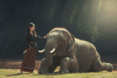 The girl and the elephant Stock Images