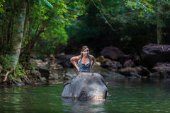 The girl with the elephant Royalty Free Stock Images