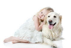 Girl embraces a Golden Retriever. Looking at camera. isolated on Stock Images