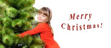 Girl embraces a green pine on white background Stock Images