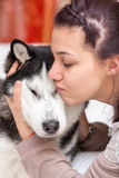 Girl embraces a siberian husky dog. In a domestic environment for express her attachment to the animal royalty free stock images