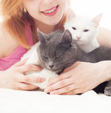 Girl  embraces two cats Royalty Free Stock Images