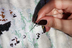 Girl embroider marking stitch on a white canvas picture. Stock Images