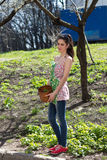 Girl is engaged in grass weeding. Girl is engaged in the spring in grass weeding Royalty Free Stock Image