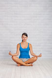 The girl is engaged in yoga Stock Photography